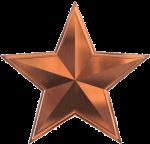 Bronze-star1